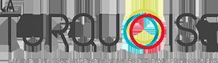 CCI2M - turquoise-logo